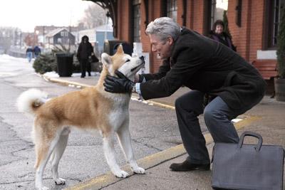 HACHI 約束の犬 メインイメージ