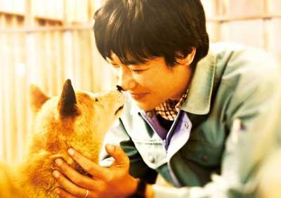 ひまわりと子犬の7日間 メインイメージ