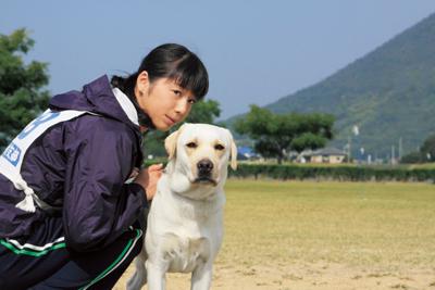 きな子〜見習い警察犬の物語〜 メインイメージ