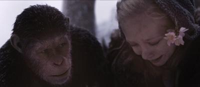 猿の惑星:聖戦記(グレート・ウォー) メインイメージ