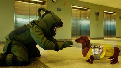 トッド・ソロンズの子犬物語 メインイメージ